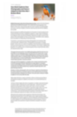 psychreg. org review.jpg