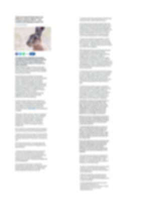 bournemouth echo full review.jpg