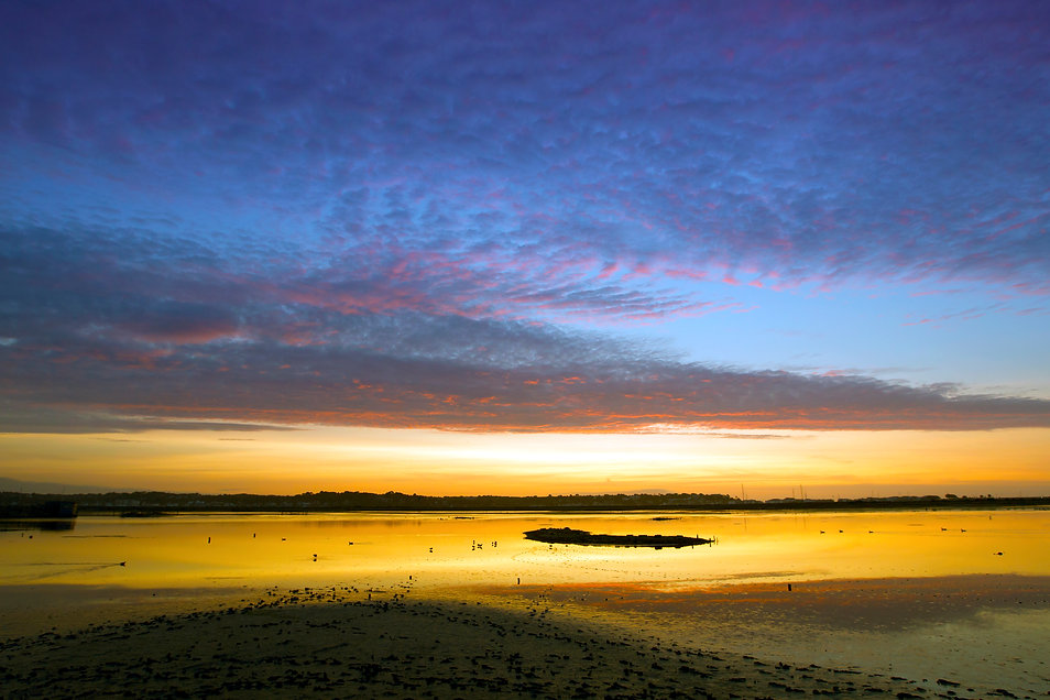 brownsea at dawn.jpg
