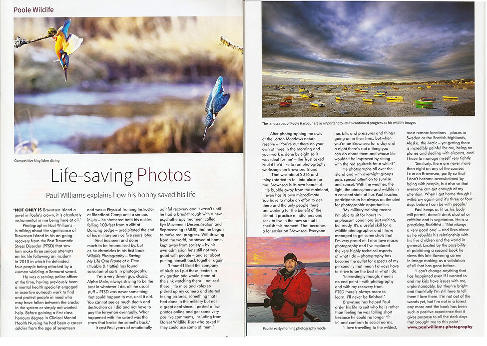 poole magazine review.jpg