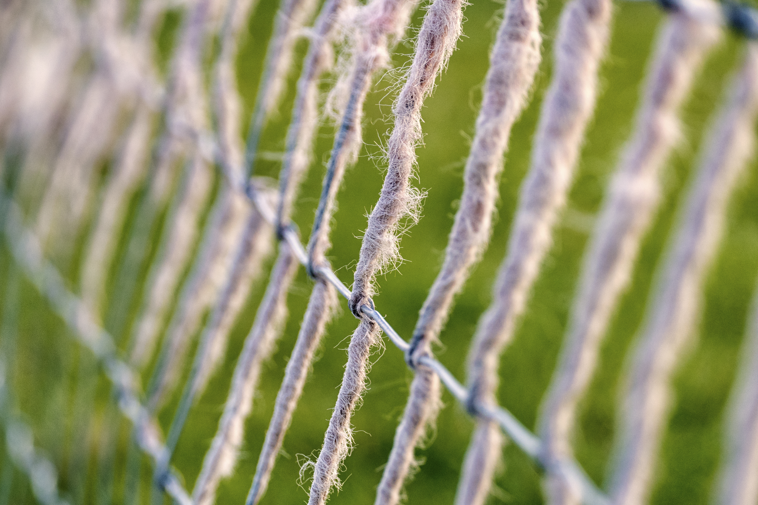Wool Fence