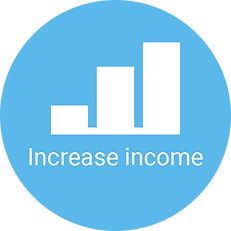 increase income button.png
