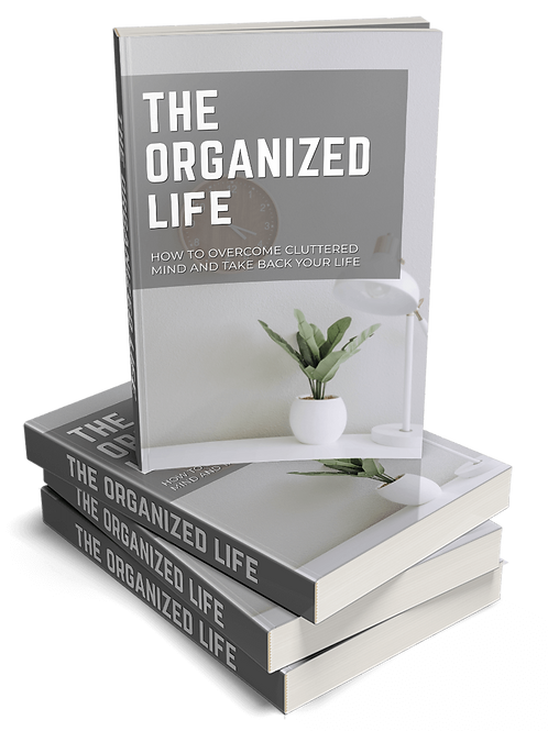 The Organized Life Video Upgrade