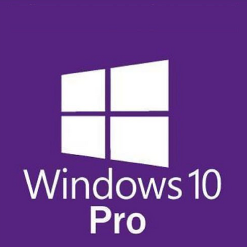 Windows 10 Pro 10 Devices Permanently valid