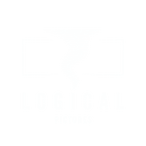 LOGO-SMALL-LogicalPICTURES-WHITE.png