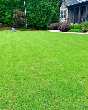 Fertilization, Lawn Care, Landscaping, Lawn Care Service, Aeration, Turf Management, Lawn Care, Grub Control, Weed Control, Seeding