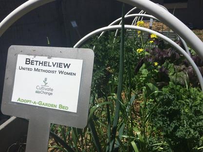 Bethelview.jpg