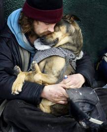 homeless_dog2.jpg
