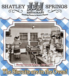 shatley logo.jpg