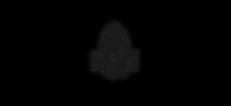 brmc logo.png