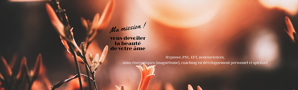 Ma mission ! (3).png