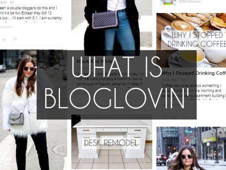 Why Anyone Who Follows Bloggers Should Have BlogLovin'