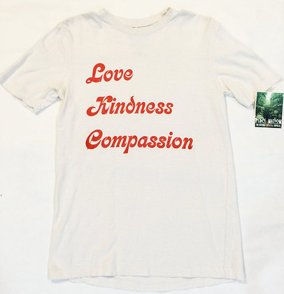 LOVE KINDNESS COMPASSION GROOVY