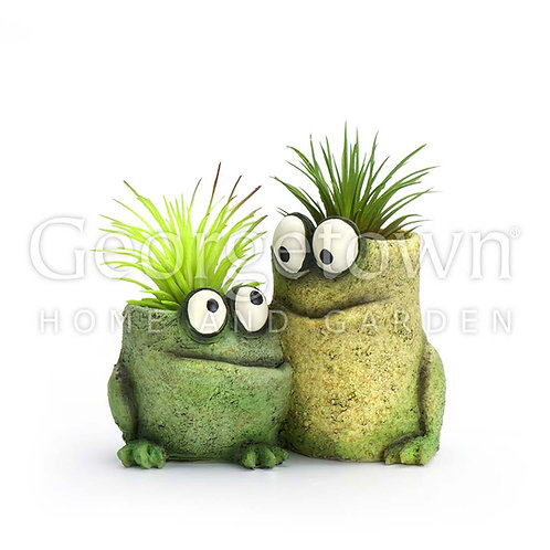 Baby Frog Pals