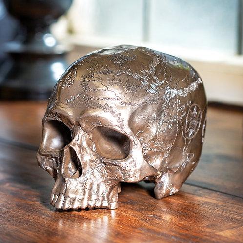 Cranium Map Skull