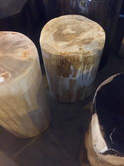 foto 2 stool fossil