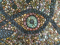 9 Eye see