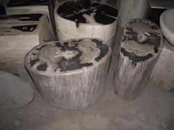 madeira petrificada