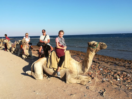 Egypt, Hurghada...different world, culture...simply amazing
