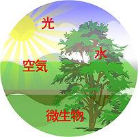 自然農法画像.jpg
