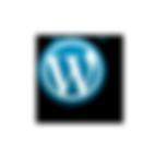 Alessandro Sakoff Visions - Wordpress Italian Blog