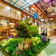 Brisbane Arcade Spring Flower Show