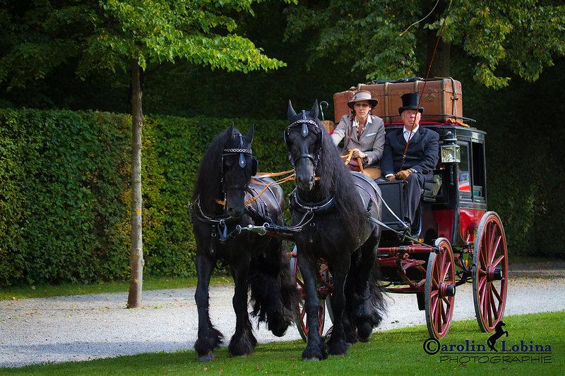 historische Kutsche mit Friesen, Carolin Lobina