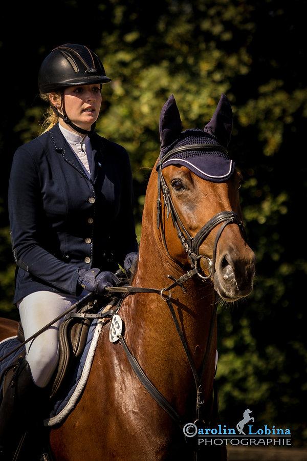 Pferd, Reiter anritt an Sprung, Carolin Lobina