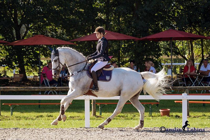 Pferd, Reiter im Galopp, Turnier, Carolin Lobina