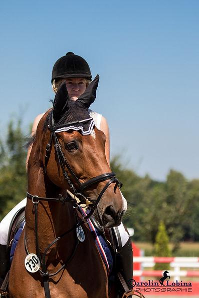 Pferd, Reiter, Turnier, Carolin Lobina