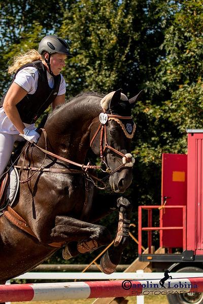 Pferd, Reiter über Sprung, Carolin Lobina