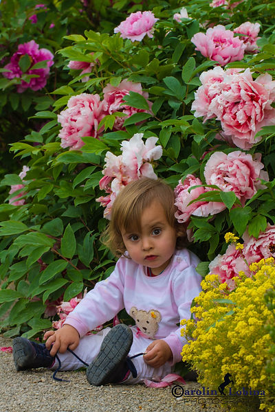 Kind unter Baumpäonie, Carolin Lobina
