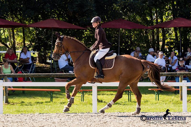 Pferd, Reiter im Galopp, Turnier, Carolin Egger