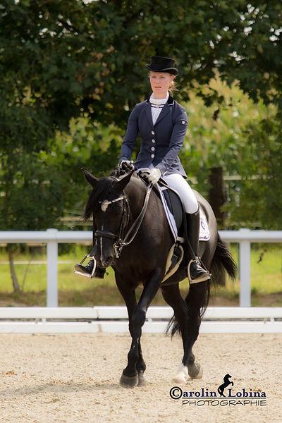 Pferd, Reiter im Schritt, Carolin Lobina