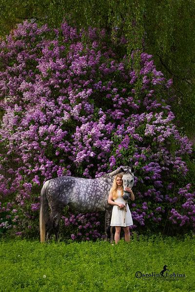 Pferd mit Mädchen vor Flieder, Carolin Lobina