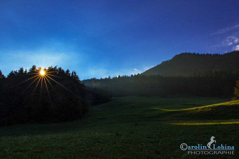 Landschaft, Sonne, Berge, Wald, Carolin Lobina