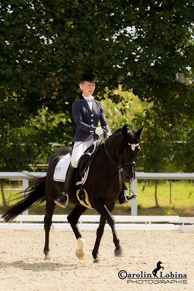Pferd, Reiter im Mitteltrab, Carolin Lobina