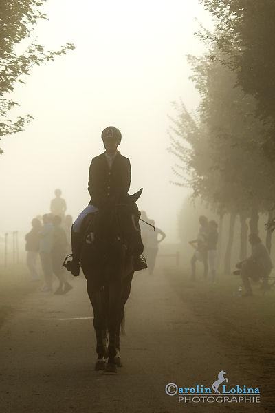 Pferd, Reiter im Nebel, Turnier, Morgen, Früh, Carolin Lobina
