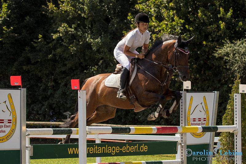 Pferd, Reiter über Sprung, Turnier, Carolin Lobina