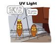 UV Light-05.jpg