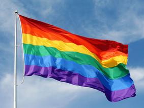 LGBT Month Factoids