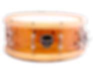 SNARE-1.png