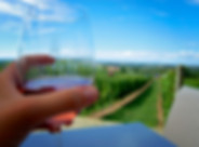 Luckett Vineyards Wine Tours.jpg
