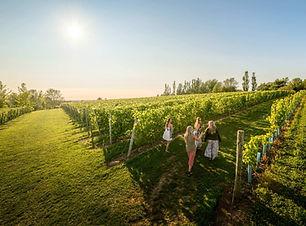 Domaine_de_Grand_Pré_Wine_Tours.jpg