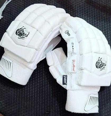 Batting Gloves 1.jpeg