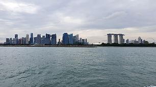 SingaporeBarrage.jpg