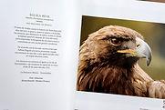 4 Libro BCIE LOGO BAJA RET Arturo Sosa 2