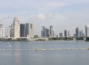 View From Marina Barrage.jpg