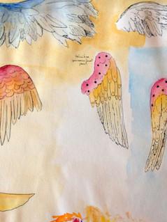 Wings development