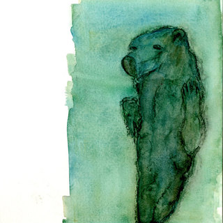 Animal mummy